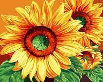 Три ярких желтых цветка