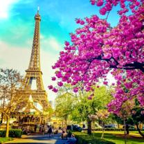 Париж в цветах в небесной вуали