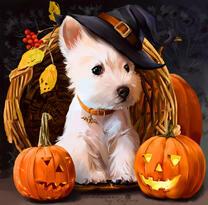 Белый щенок на Хэллоуин